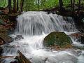 Flickr - Nicholas T - Yost Run Falls.jpg