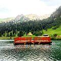 Floating Restaurant Domel.jpg