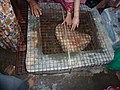 Floating stone-Rameshwaram.jpg