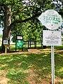Floral Dog Park.jpg