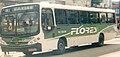 FloresOnibus.JPG