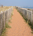 Footpath along Dawlish Warren.jpg