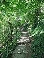 Footpath through the woods. - geograph.org.uk - 536097.jpg