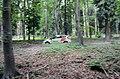 Ford Fiesta R2 (35590259991).jpg