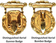 Ex-Exército dos EUA Distinguished Aerial Badges.png