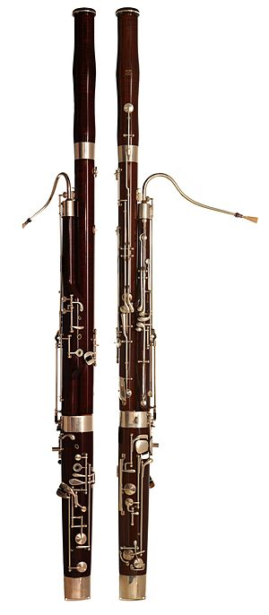 Two bassoons made of black maple, with silver-...