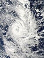 Freda Dec 29 2012 0245 (UTC) .jpg