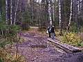 G. Zlatoust, Chelyabinskaya oblast', Russia - panoramio (33).jpg