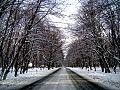 Gabal winter.jpg