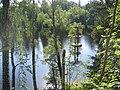 Gamla hopptornet i Dalälven nedanför Golfbanan - panoramio.jpg