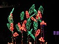 Garden d'Lights 2008 at the Bellevue Botanical Garden, img011.jpg