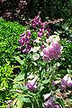 Gardens23.jpg