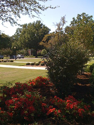 University of Central Arkansas - Flowers looking towards the south, central part of campus.