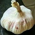 GarlicPL.jpg