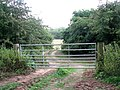 Gated track into a field - geograph.org.uk - 1388326.jpg