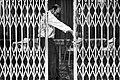 Gatekeeper (8633805365).jpg