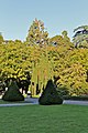 Geneve - Coucher de Soleil - panoramio (5).jpg