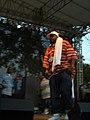 Ghostface Intonation Music Festival 06 CAM 3878 (174539147).jpg