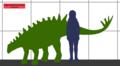 Gigantspinosaurus SIZE.png