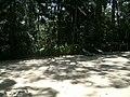 Ginastica - Parque Guarapiranga - Av. Guarapiranga 505 (1) - panoramio.jpg