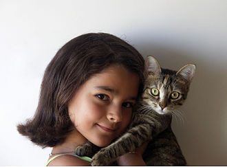 Human interaction with cats - Girl with young cat
