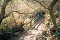 Glen Canyon Park 21 (16896314600).jpg