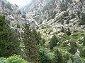 Gorges de Núria des del cremallera P1030251.JPG