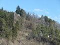 Grüneck 2011 02.JPG