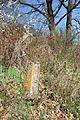 Gradsko groblje u Gornjem Milanovcu, stari deo 09.jpg