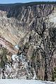 Grand Canyon of the Yellowstone 17.JPG