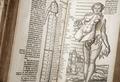 Gravid kvinnas anatomi i boken Archidoxa, 1575 - Skoklosters slott - 102641.tif