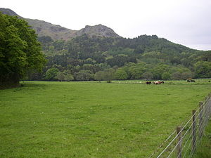 Green Pastures.
