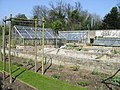 Greenhouses in the walled garden, Quex Park - geograph.org.uk - 377330.jpg