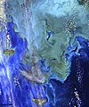 Greens and blues of the ocean color from NASA satellite data. Original from NASA. Digitally enhanced by rawpixel. - 45638539034.jpg