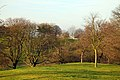 Greenwich Park - geograph.org.uk - 2337944.jpg