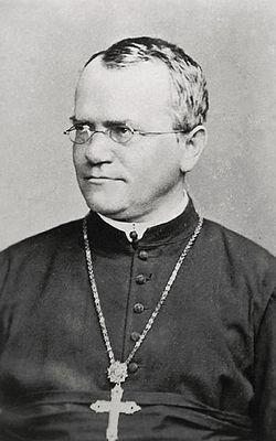 Gregor Mendel - Wikipedia, kamusi elezo huru