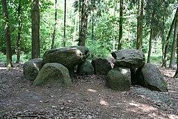 Großsteingrab Teufelsküche 25