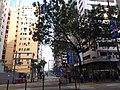 HK 灣仔 Wan Chai 軒尼斯道 Hennessy Road January 2019 SSG 10.jpg