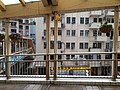 HK ML 半山區 Mid-levels 羅便臣道 Robinson Road escalators n footbridge February 2020 SS2 03.jpg