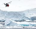 HMS Endurance's Lynx helicopter flies past a seal MOD 45147621.jpg