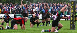 Harlequin F.C. - Harlequins celebrating a try during the 2005–06 season.