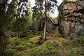 Hautvuori luolan3 suuaukko.jpg