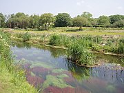 Hayle River near St Erth - geograph.org.uk - 182864