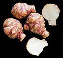 Helianthus tuberosus-fond noir