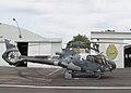 Helicóptero do GRAER.jpg