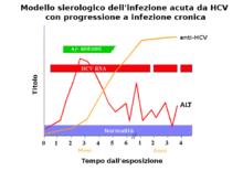 Modello sierologico dell'infezione da HCV in caso di cronicizzazione (fonte: CDC)
