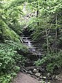 Hidden waterfall by Montour Trail (42416353371).jpg