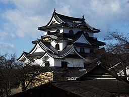 Hikone castle5537