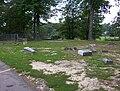 Hills Chapel Cemetery Cordova TN 1.jpg