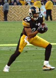 Wikipedia: Hines Edward Ward, Jr. at Wikipedia: 220px-Hines_Ward_Steelers